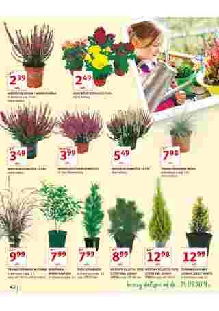Auchan - gazetka obowiązująca od 2019-08-22 - strona 43