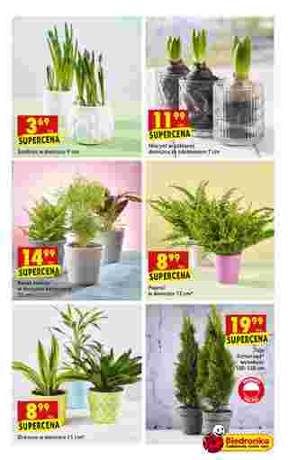 Biedronka - NEWSPAPERS_singleNewspaper_alt_presentationSliderItem_startAt 2019-03-14 - página 47