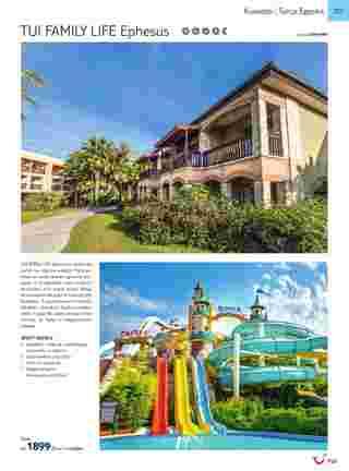 Tui - NEWSPAPERS_singleNewspaper_alt_presentationSliderItem_startAt 2019-05-01 - página 359