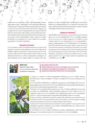 Hebe - gazetka obowiązująca od 2019-07-01 - strona 33