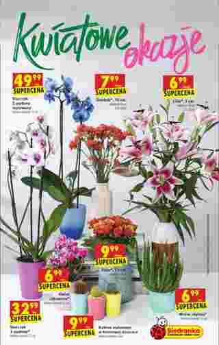 Biedronka - gazetka obowiązująca od 26-08-2019 - strona 67