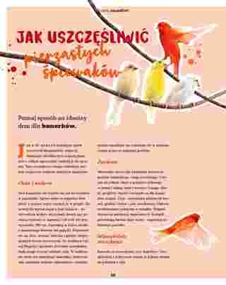 Maxi ZOO - gazetka obowiązująca od 23-09-2019 - strona 50