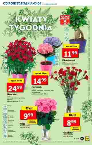 Lidl - gazetka obowiązująca od 03-06-2019 - strona 31