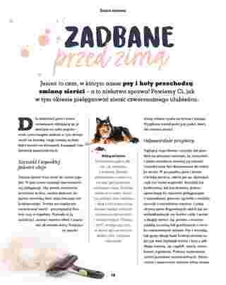 Maxi ZOO - gazetka obowiązująca od 23-09-2019 - strona 16
