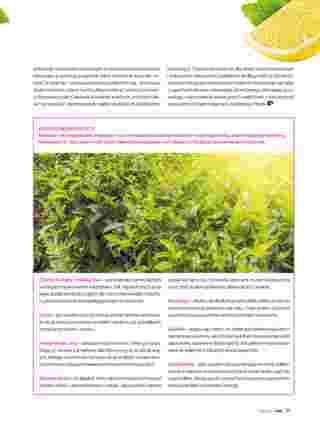 Hebe - gazetka obowiązująca od 01-09-2019 - strona 29