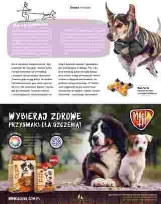 Maxi ZOO - gazetka obowiązująca od 23-09-2019 - strona 27