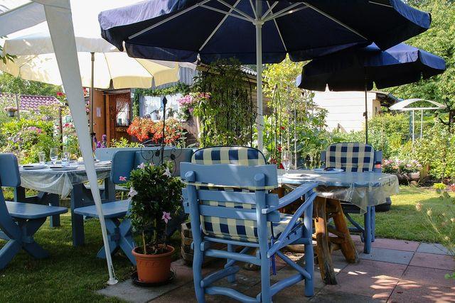 Cataloage de oferte esențiale pentru grădina ta