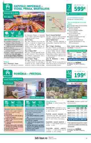 Lidl - promo începând de la 01-10-2019 - pagină 13