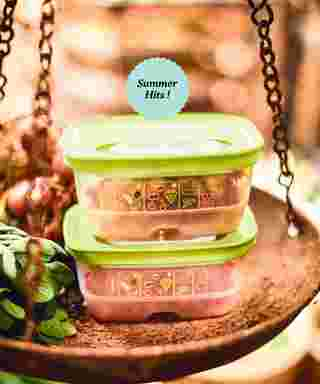 Tupperware - promo starting from 2019-03-20 - page 48