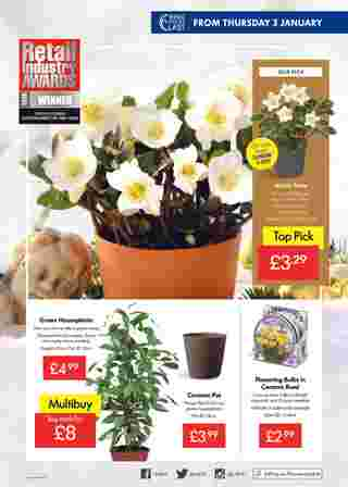 Lidl - promo starting from 2019-01-03 - page 9