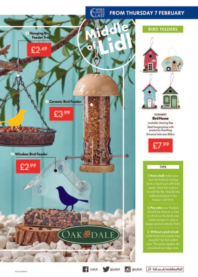 LIDL - promo starting from 2019-02-07 - page 7