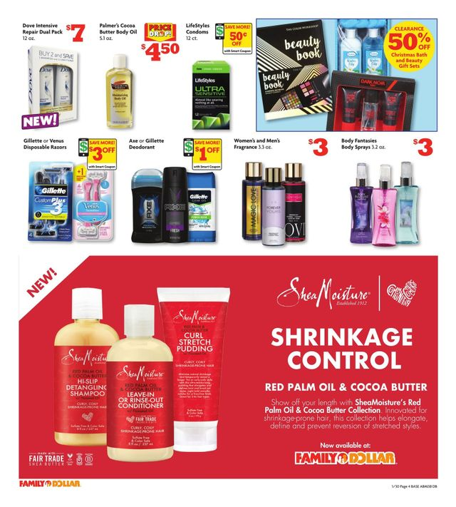 Family Dollar - promo starting from 2019-01-30 - page 4
